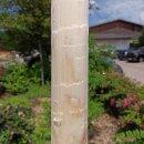 Zaunpfahl Northern White Cedar Höhe 140 cm rund zu Zaun Höhe 80-90 cm Durchmesser ca 7-9cm mit Spitze