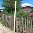 Zaunpfahl Northern White Cedar Höhe 150 cm rund zu...