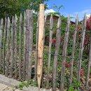 Zaunpfahl Kastanie Höhe 80 cm rund zu Zaun Höhe...