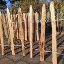 Proline Staketenzaun Kastanie 50 cm hoch, 1m-Schnittware bis max 9m Länge, Lattabstand ca 8-10cm
