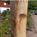 Rundholz Kastanie Höhe 200 cm Durchmesser ca 8cm